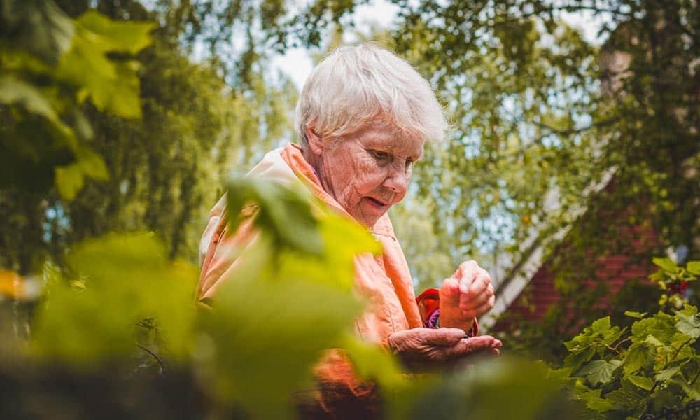 Cuidado de personas mayores, recomendaciones esenciales