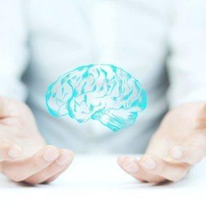 Fórmate con la doble titulación Máster en Neuroanatomía y Neurología Funcional + Máster en Neuropsicología Clínica y especialízate en anatomía del sistema nervioso